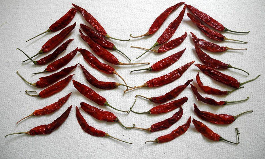 4 Leheriya Red chilli 2_920
